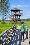 Сторожевая башня в лесе Bialowieza, Польше стоковая фотография
