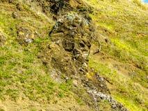 Сторона в утесе, остров козы, Новая Зеландия Стоковое Изображение