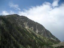 Сторона горы с путями лавины Стоковое Изображение RF