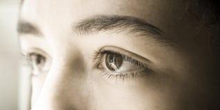 Сторона глаза стоковое изображение rf
