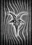 Сторона козы Стоковое Фото