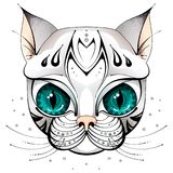 Сторона кота с большими глазами стоковое фото