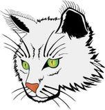 Сторона кота Стоковые Фотографии RF