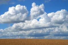 сторона облака кота Стоковое Изображение RF
