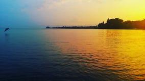 Сторона озера Стоковые Изображения RF