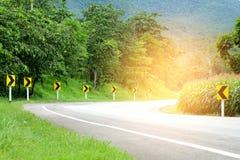 Сторона дороги асфальта изогнутая нивы Стоковая Фотография