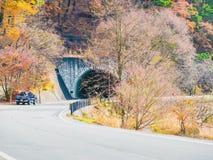 Сторона дороги озера kawaguchi с конкретным тоннелем для через Стоковая Фотография RF