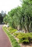 сторона дороги Стоковое Фото