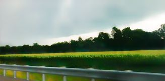 сторона дороги Стоковое фото RF