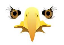 Сторона орла Стоковое Изображение RF