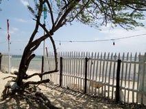 Сторона пляжа Masugbo стоковое фото rf
