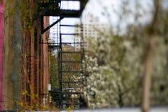Сторона пожарной лестницы здания Стоковое фото RF