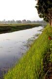 сторона реки стоковая фотография rf