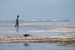 Сторона рыбной ловли - мимо - сторона стоковая фотография
