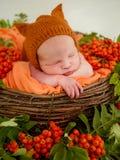 Сторона спать newborn в корзине Стоковая Фотография