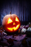 Сторона тыквы хеллоуина фонариков Джека o Стоковые Изображения RF