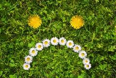 Сторона цветка несчастная Стоковые Фотографии RF
