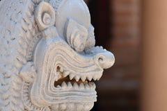 Сторона льва Стоковые Изображения RF