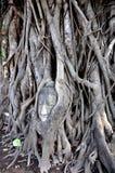 сторона 2 Будд внутри вала Стоковое Изображение RF