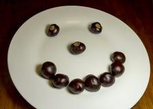 Сторона Smiley конского каштана Стоковое фото RF