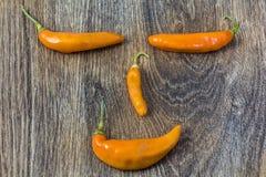 Сторона Smiley сделанная из перца chili Стоковые Изображения