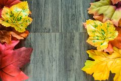 Стороны рамки листьев крупного плана красочные серой деревянной предпосылки Стоковая Фотография RF