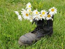 стоцветы ботинка армии старые Стоковые Фото
