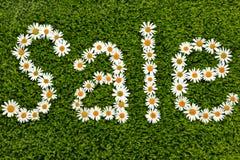 Стоцветы & продажа Стоковые Фото