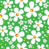 Стоцвет безшовный на зеленом цвете Стоковая Фотография