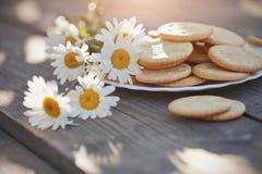 Стоцвет и печенья Стоковая Фотография