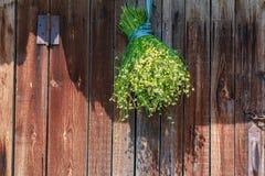 Стоцвет снопа высушенный в тени Стоковая Фотография RF