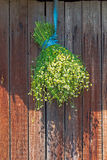 Стоцвет снопа высушенный в тени Стоковое фото RF