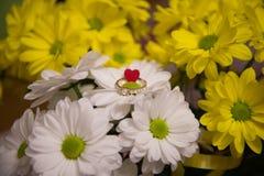 Стоцвет цветет обои с обручальным кольцом стоковые изображения rf