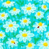 стоцвет бесплатная иллюстрация