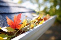 Сточная канава дождя вполне листьев осени стоковое фото