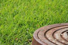 Сточная труба в парке Стоковая Фотография