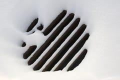 сточная труба решетки Стоковое Фото