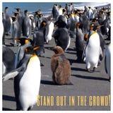 Стоьте вне в толпе Стоковое Фото