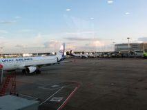 стоянка автомобилей domodedovo авиапорта оплащенная moscow Внутренний взгляд international Стоковые Изображения