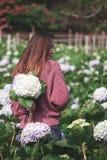 Стоять женщины поворачивает вокруг к цветкам гортензии сада стоковое изображение