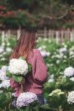 Стоять женщины поворачивает вокруг к цветкам гортензии сада стоковые изображения rf