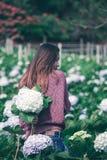 Стоять женщины поворачивает вокруг к цветкам гортензии сада стоковое изображение rf