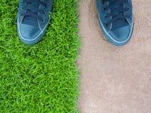 Стоять на лужайке между полом цемента Стоковые Изображения