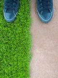 Стоять на лужайке между полом цемента Стоковое фото RF