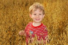 стоять овсов поля мальчика Стоковые Изображения RF
