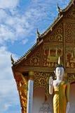 Стоящее изображение Будды Стоковые Фотографии RF