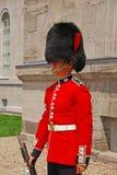 Стоящий предохранитель в красной форме на холме парламента, Оттава, Канада Стоковые Фото