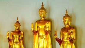 Стоя Buddhas в золоте смотрит античным в Wat Pho стоковые фотографии rf