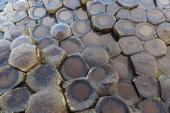Столбцы базальта мощёной дорожки Giants Стоковые Фотографии RF