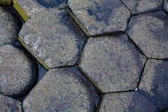 Столбцы базальта на мощёной дорожке Giants Стоковая Фотография RF